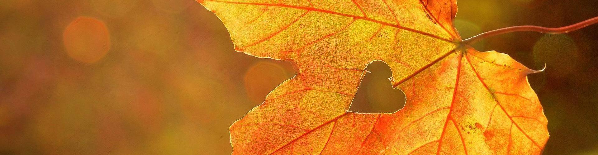 Lo Chef consiglia - Sapori d'autunno al Ristorante Al Crap